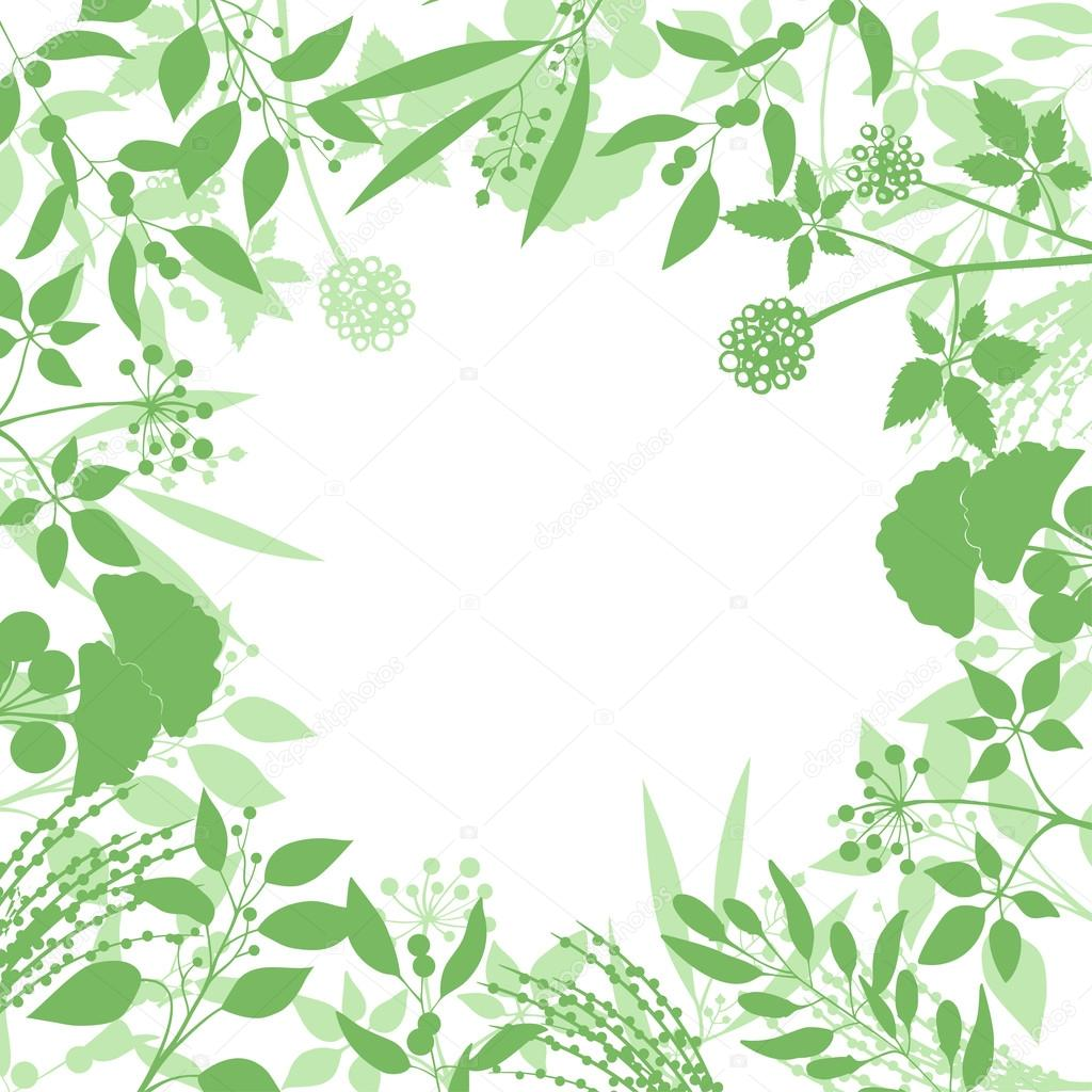 Green Square Background With Collection Of Plants Silhouette Herbs Branches Isolated On White