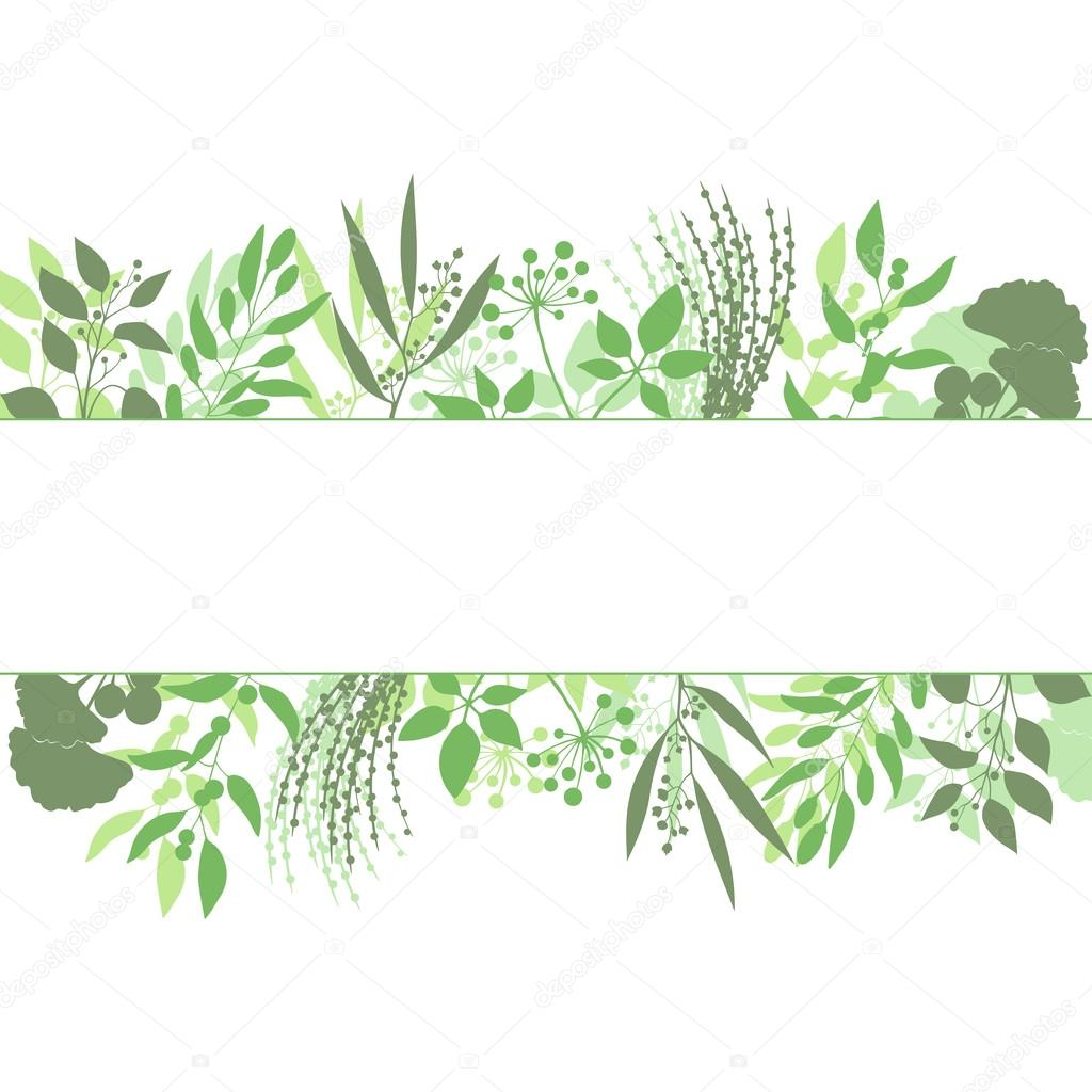 Green rectangle frame with collection of plants. Silhouette of branches isolated on white background