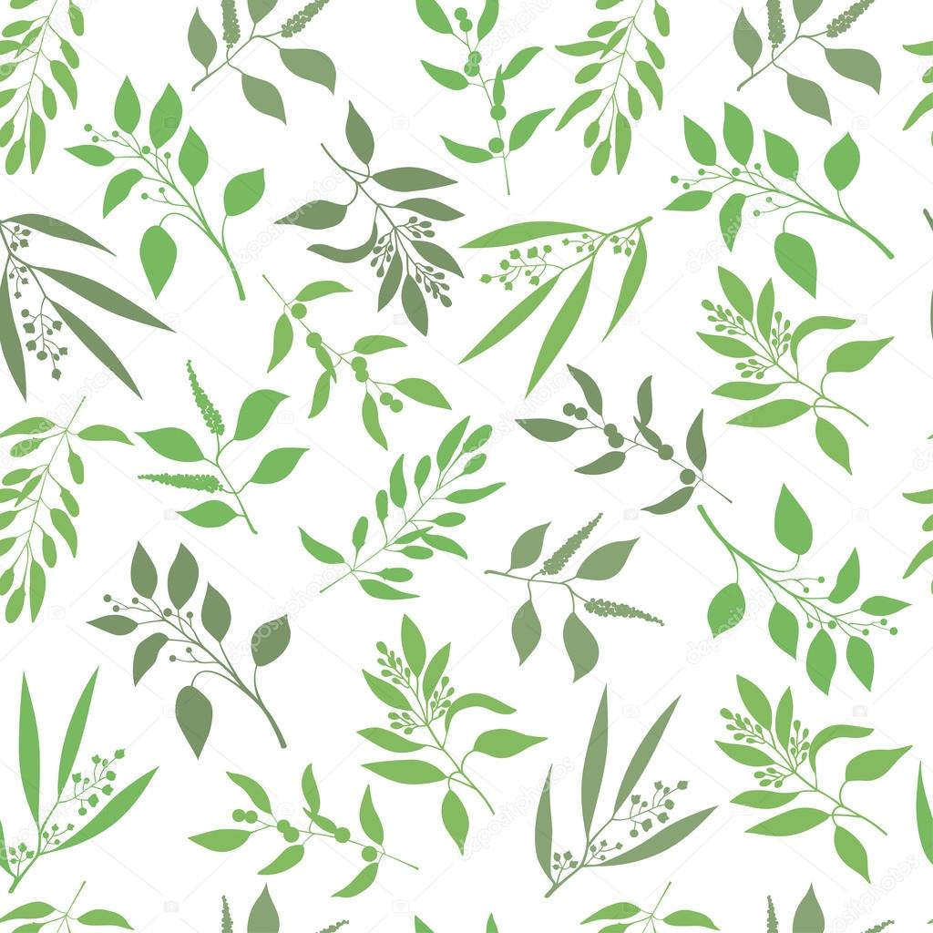 Seamless Plant Background Endless Pattern With Green Twigs And Leaves Silhouette Vector Illustration On White By Sasha2538