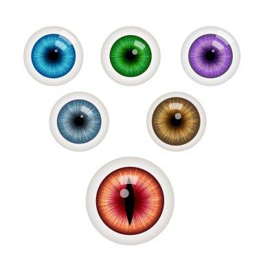 Set of colorful eye balls. Green eye ball. Blue eye. Grey eye. Red eye. Purple eye. Brown eye. Vector illustration isolated on white stock vector