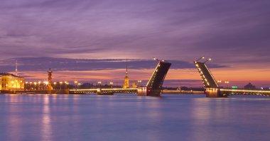 Raised Palace bridge at night in Saint-Petersburg, Russia.