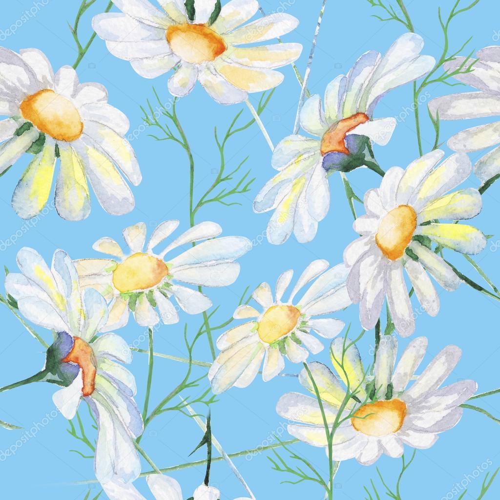 Wild daisy flower stock photo aleksmayya 121521716 wild daisy flower stock photo izmirmasajfo