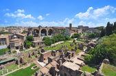 Římské fórum, jak je patrné z Palatinu
