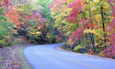 Autumn colors on the Blue Ridge Parkway near Asheville, North Carolina