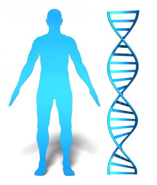 Human gene research and genetic information concept featuring a mans silhouette beside a DNA spiral