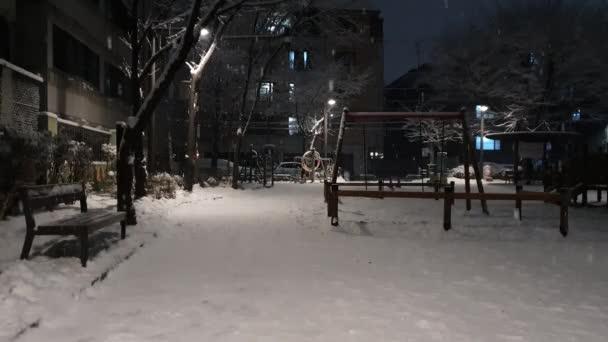 Ein ruhiger Abend mit fallendem Schnee und Blick auf den Park