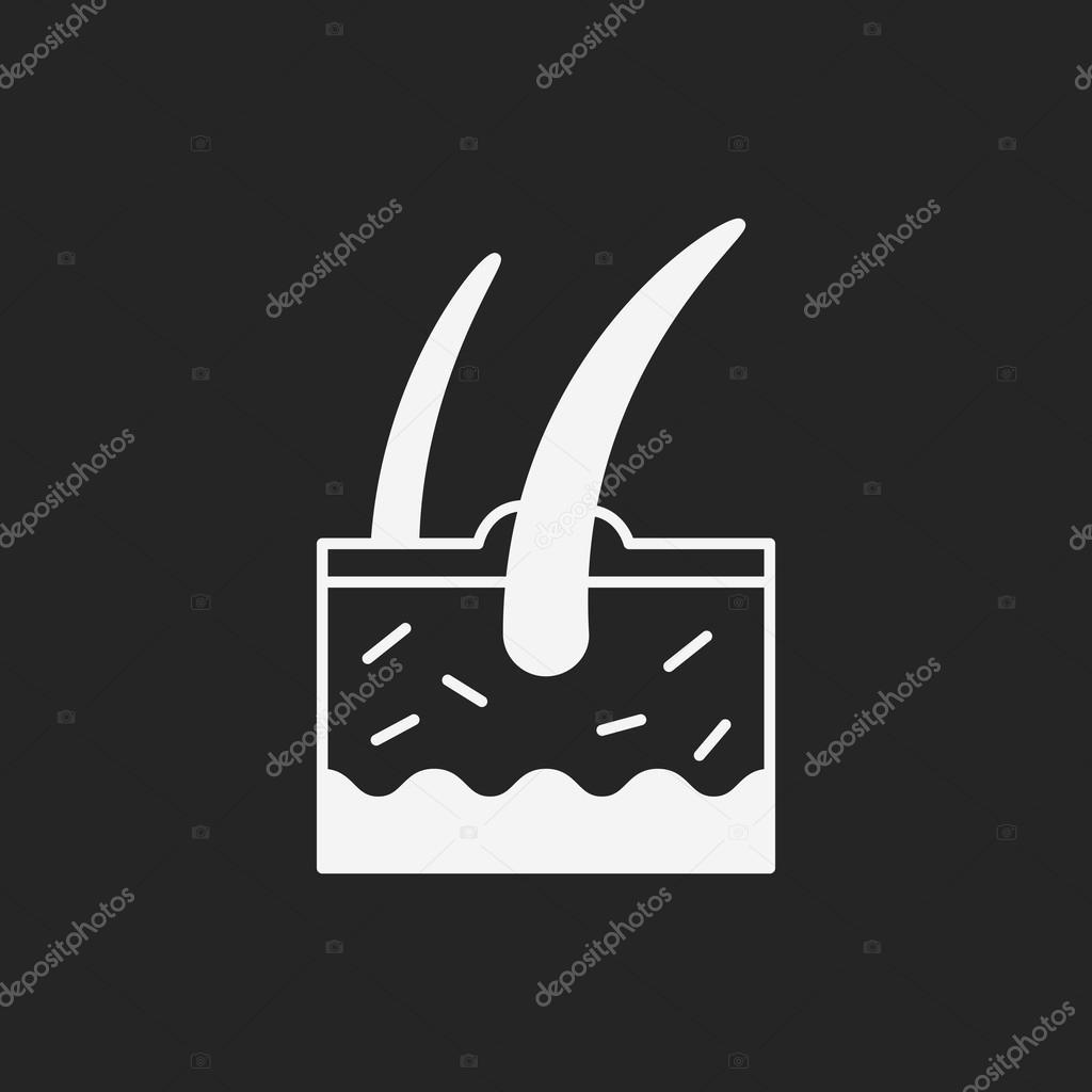 Icono de raíz de cabello — Archivo Imágenes Vectoriales © vectorchef ...