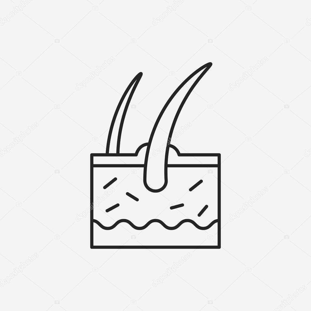 Icono de línea de raíz de cabello — Archivo Imágenes Vectoriales ...