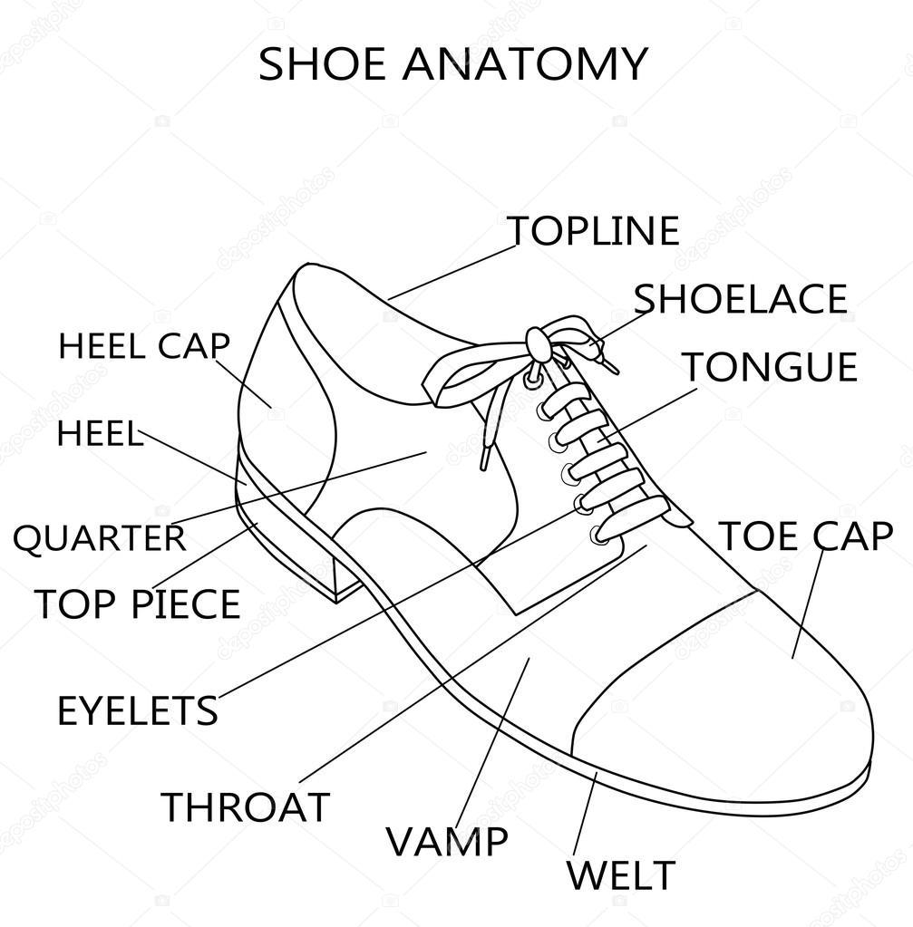 Mode-Illustration - Raster Abbildung der Anatomie eines Schuhs ...