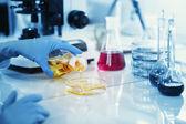 Věda, chemie, technologie, biologie a lidé koncept - mladá žena vědec promíchání činidla ze skleněné baňky a dělat test nebo výzkumu v klinické laboratoři