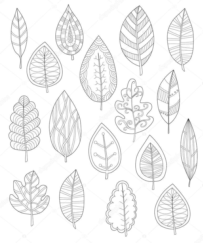 collectie bladeren voor kleurplaten set
