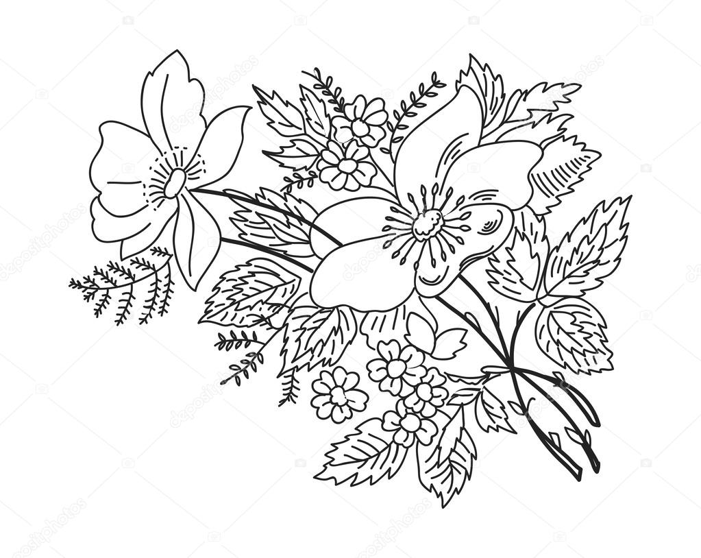 Contour Line Drawing Flower : Contorno preto de ramos flores desenho em branco — vetores
