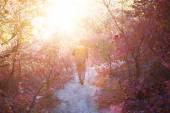 Fényképek A lány séta az erdőben hátizsák