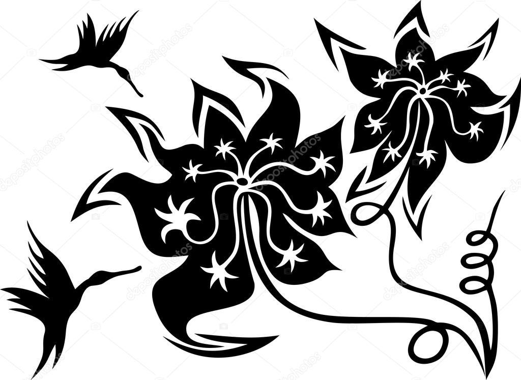 Imágenes De Colibrí En Blanco Y Negro Colibríes Y Flores En