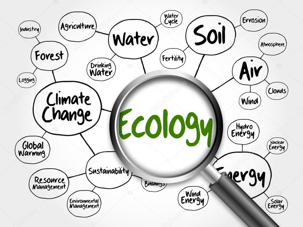 Ecology Mind Map Flowchart Concept Stock Photo C Dizanna 105530508