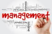 Fotografie Handschrift Management Wortwolke