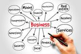 podnikání