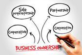 üzleti tulajdon