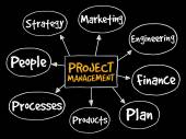 Projektmanagement-Mindmap
