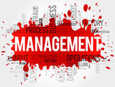 Management-Wortwolke
