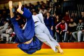 Photo fighter judo throw IPPON