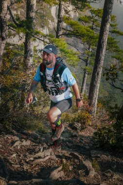 male runner goes uphill through pine forest