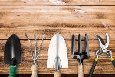 Set of plant care utensils