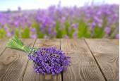 Fotografie bunch of lavande   flowers