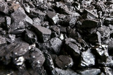 Fossil coal texture