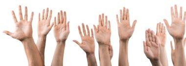 Set of raised hands
