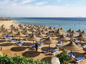 sandy beach with umbrellas at seashore
