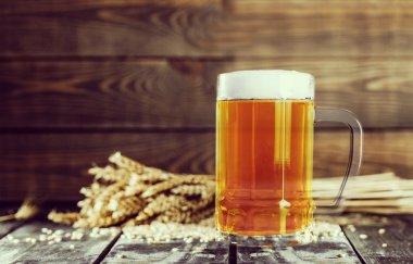 Mug of beer with barley seeds