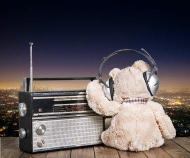 teddy bear and radio