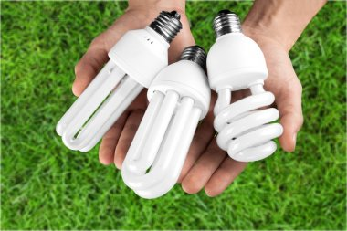 eco Light bulbs in hands
