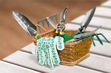 Gardening tools on background