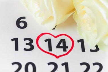 Takvim. Kırmızı gül takvim tarihi Şubat ile 14 Sevgililer günü lay
