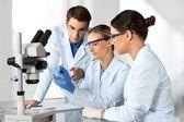 Kutatási laboratórium, biotechnológia,