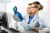 Fotografie Labor, Gesundheitswesen und Medizin, Forschung.