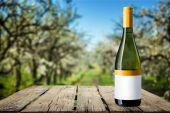 Láhev na víno víno, Label,
