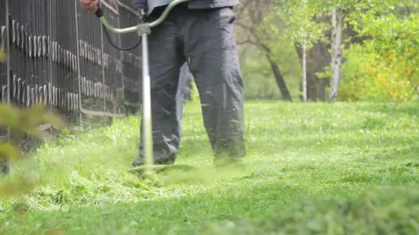 Zahradník seká sekačkou zelené trávy