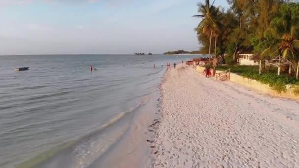 Coastline of Beach Resort with Palm Trees, Coastal Hotels, Zanzibar, Low Flight