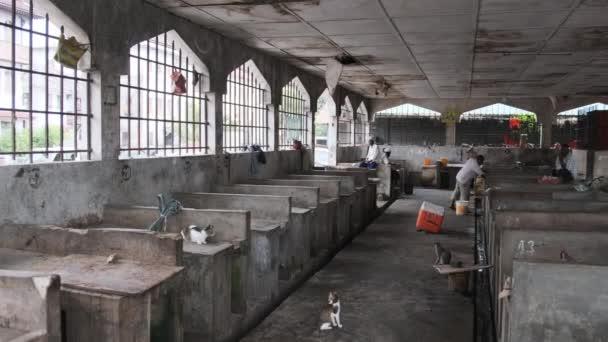 Nearly empty stalls at the fish market in Stone Town, Zanzibar.
