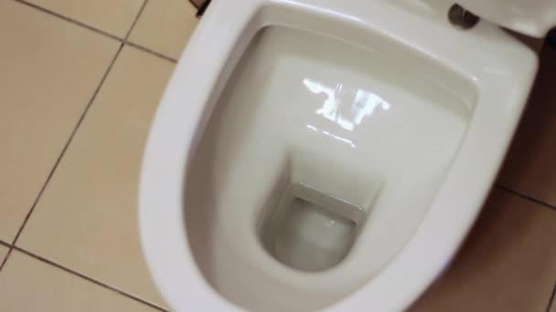 Reinigung der WC-Schüssel, Reinigungsbürste