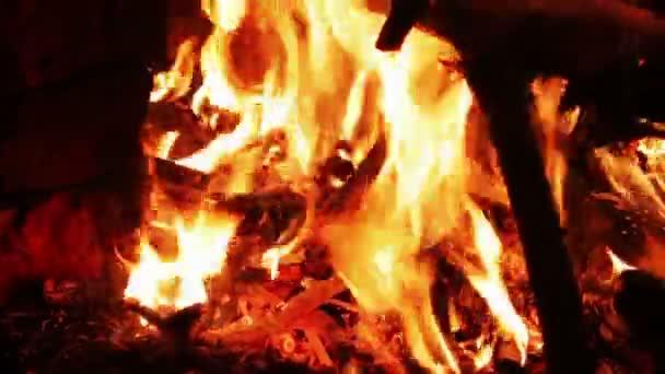 Oheň v noci v lese a rozpálené uhlí na zem a spoustu jiskry z ohně.