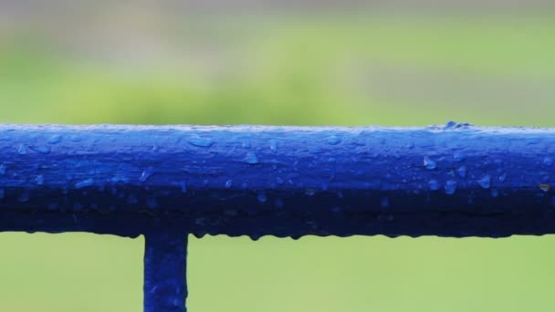 Kapky vody v dešti