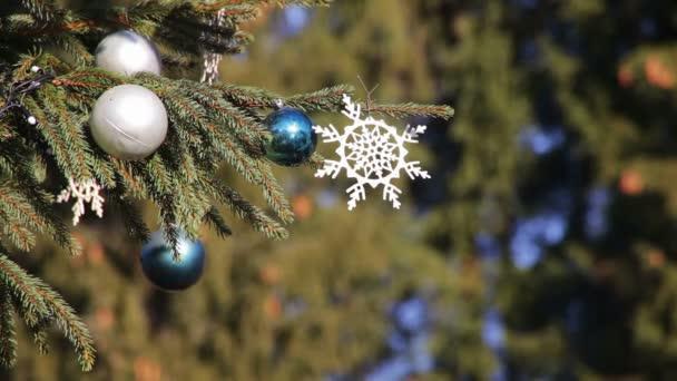 geschmückter Weihnachtsbaum auf der Straße.