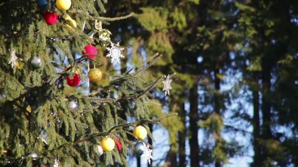 Díszített karácsonyfa az utcán.