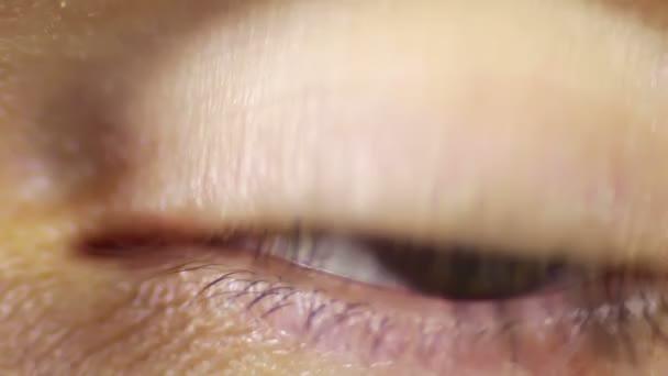 The Human Eye, Sight