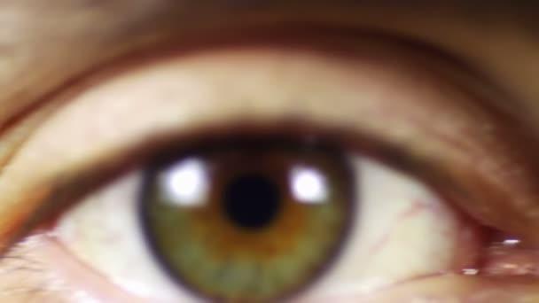 Lidské oko, pohled