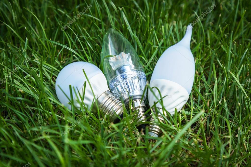 LED bulbs, Energy Saving Lamp, advanced technology, eco, grass, lamp, white, energy, lighting, lights, green